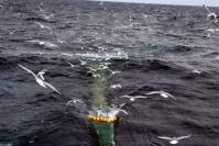 EU, fiskeriforvaltning og havretten